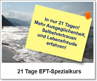 EFT-Spezialkurs
